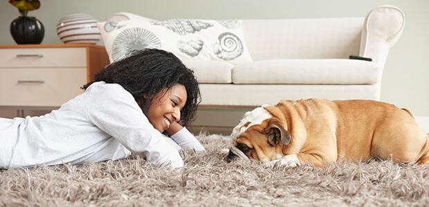 Tips for Picking  the Best Carpet